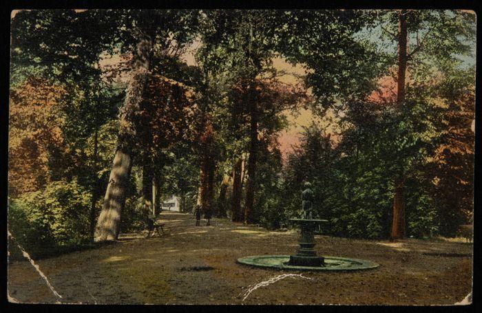 Gekleurde prentbriefkaart, foto van de Oude Plantage met een parkachtige laan met een beeld