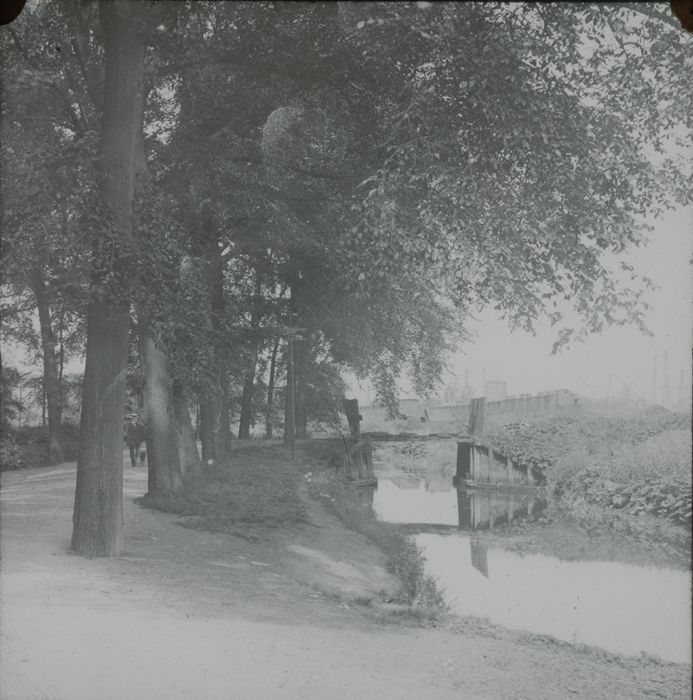 Glasdia van Oude Plantage